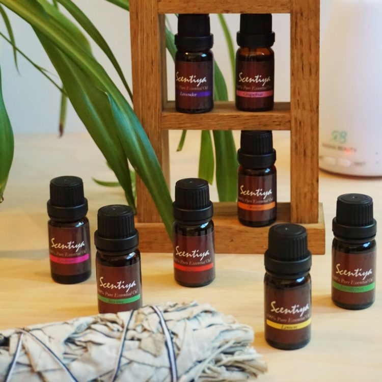 The absolute basics of essential oils, with a free quick reference guide to download!